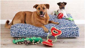 divani-per-cani-comodi